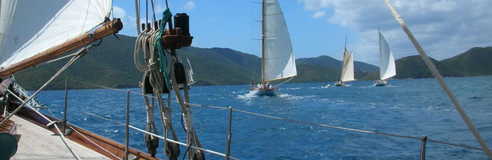 Modern yachts and classic boats